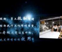 视频|企业执行力打造篇